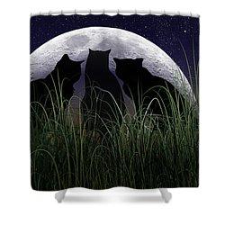 Threefold Shower Curtain by Brian Wallace