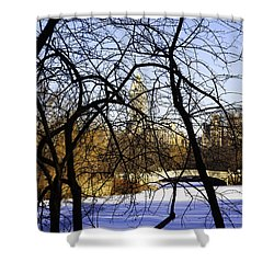 Through The Branches 3 - Central Park - Nyc Shower Curtain by Madeline Ellis