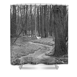 Through The Woods Shower Curtain by Sara  Raber