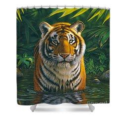 Tiger Pool Shower Curtain by MGL Studio - Chris Hiett