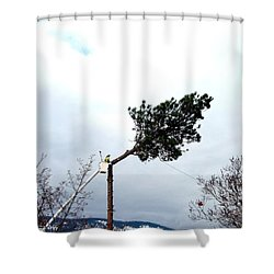 Timber Shower Curtain by Will Borden