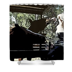 Time For Treats At The Run In Shed Shower Curtain by George Pedro