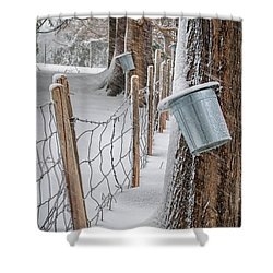Time To Tap Shower Curtain by Scott Thorp