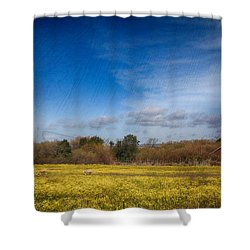 Times Like These Shower Curtain by Laurie Search
