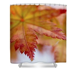 Tip Shower Curtain by Caitlyn  Grasso
