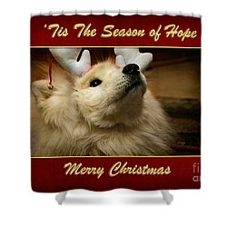 'tis The Season Of Hope Merry Christmas Shower Curtain by Lois Bryan
