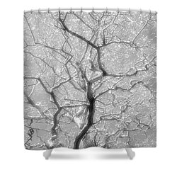 To Be Or Not To Be Shower Curtain by Newel Hunter