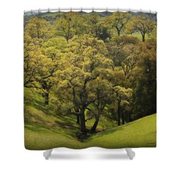 To Comfort You Shower Curtain by Laurie Search