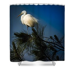 On Top Of The World Shower Curtain by Karen Wiles