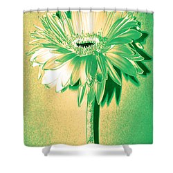 Touch Of Turquoise Zinnia Shower Curtain by Sherry Allen