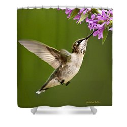 Touched Shower Curtain by Christina Rollo