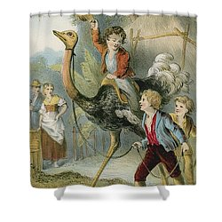 Training The Ostrich Shower Curtain by English School