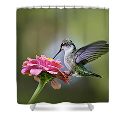 Tranquil Joy Shower Curtain by Christina Rollo