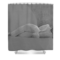 Tranquility Shower Curtain by Don Perino