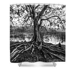 Tree Of Life Shower Curtain by Debra and Dave Vanderlaan