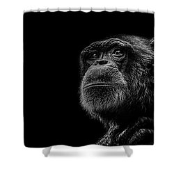 Trepidation Shower Curtain by Paul Neville
