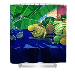 Tropical Fruit Shower Curtain by Lincoln Seligman