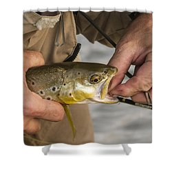 Trout Dentistry Shower Curtain by Jean Noren