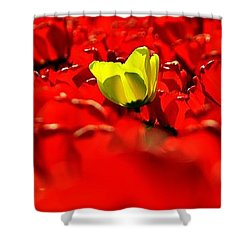 True Color Panorama Shower Curtain by Benjamin Yeager