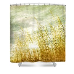 True Love Transcends Time Shower Curtain by Linda Lees