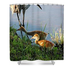 Trying To Catch... Shower Curtain by Zina Stromberg