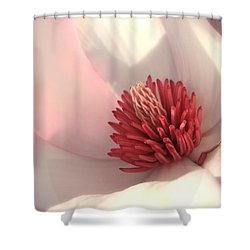 Tulip Tree Blossom Shower Curtain by Carol Groenen