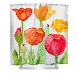 Tulips With Lady Bug Shower Curtain by Ashleigh Dyan Bayer