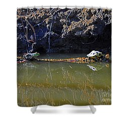 Turtle And Frog On A Log Shower Curtain by Al Powell Photography USA