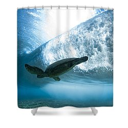 Turtle Clouds Shower Curtain by Sean Davey