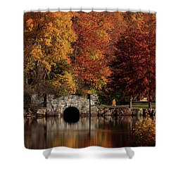 Twin Brooks Shower Curtain by Karol Livote