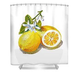 Two Happy Lemons Shower Curtain by Irina Sztukowski