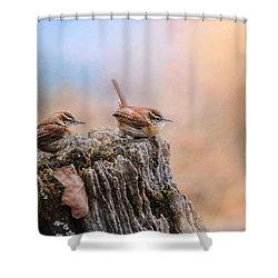 Two Little Wrens Shower Curtain by Jai Johnson