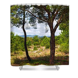 Two Pine Trees Shower Curtain by Carlos Caetano