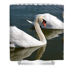 Two Swimming Swans Shower Curtain by Carol Groenen