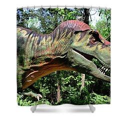 Tyrannosaurus Rex  T. Rex Shower Curtain by Kristin Elmquist