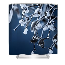 Under The Mistletoe Shower Curtain by Loriental Photography
