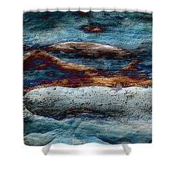 Untamed Sea 2 Shower Curtain by Carol Cavalaris