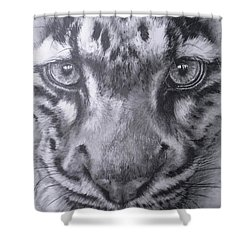 Up Close Clouded Leopard Shower Curtain by Barbara Keith