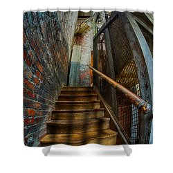 Up To Something Good Shower Curtain by Susan Candelario