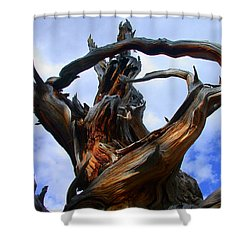 Uprooted Beauty Shower Curtain by Shane Bechler