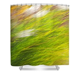 Urban Nature Fall Grass Abstract Shower Curtain by Christina Rollo
