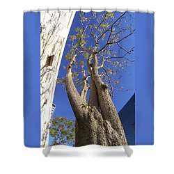 Urban Trees No 1 Shower Curtain by Ben and Raisa Gertsberg