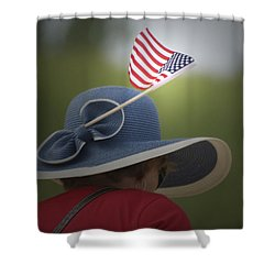 Usa Flags 04 Shower Curtain by Thomas Woolworth