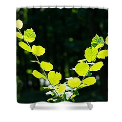V For Victory - Featured 3 Shower Curtain by Alexander Senin