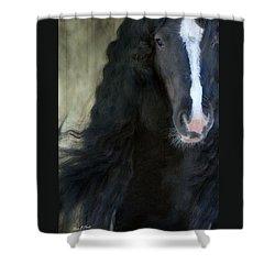 Valentino Dreams Shower Curtain by Fran J Scott