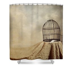 Vanishing Act Shower Curtain by Amy Weiss