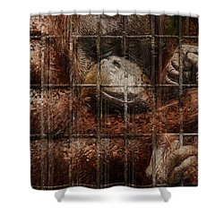Vanishing Cage Shower Curtain by Jack Zulli