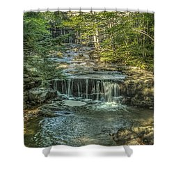 Vaughan Woods Stream Shower Curtain by Jane Luxton