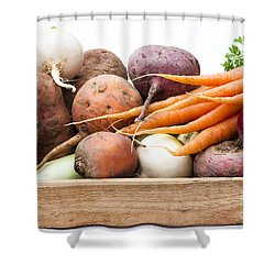 Veg Box Shower Curtain by Anne Gilbert