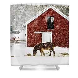 Vermont Christmas Eve Snowstorm Shower Curtain by Edward Fielding